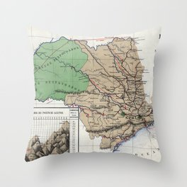 Map of the province of São Paulo - 1886 Throw Pillow