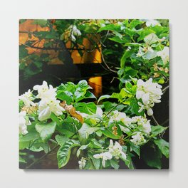 Flowers At Dusk Lit By Lantern Light Metal Print