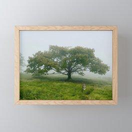 Duke at Craggy Gardens Framed Mini Art Print