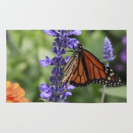 BUTTERFLY I Rug