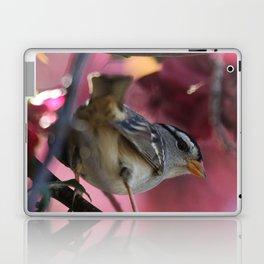 White Crowned Sparrow Laptop & iPad Skin