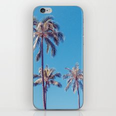 palm tree ver.sunny day iPhone & iPod Skin