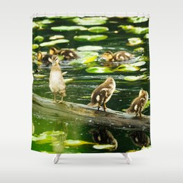 Duckling Stretch Shower Curtain