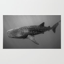 Big Fish, B & W Rug