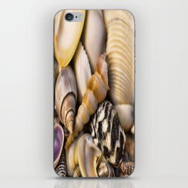 Sea Shell Vision iPhone Skin