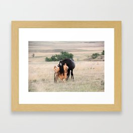 Young Cheyenne with Pony Framed Art Print