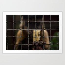 Let Me Out! Art Print