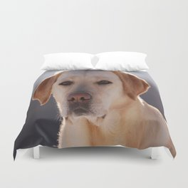 Portrait of A Golden Labrador Retriever Duvet Cover