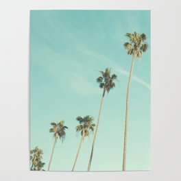 Palm Trees 2 Poster