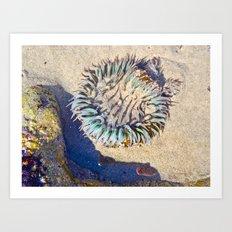 Jellin' Art Print