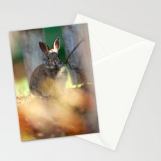 Backyard Friend Stationery Cards