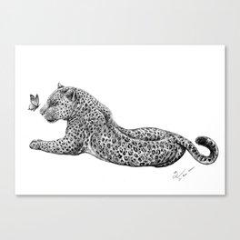 Leopard & Butterfly  Canvas Print
