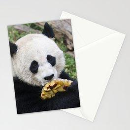 Panda Likes Stationery Cards