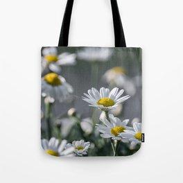 leucanthemum Tote Bag