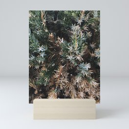 Browning Bush Mini Art Print