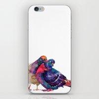 takmaj iPhone & iPod Skins featuring Pigeons by takmaj
