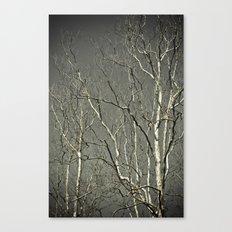 Tree #1 Canvas Print