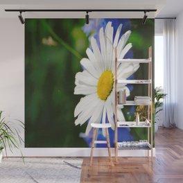 White Daisy Flower Loves Me Loves Me Not Wall Mural