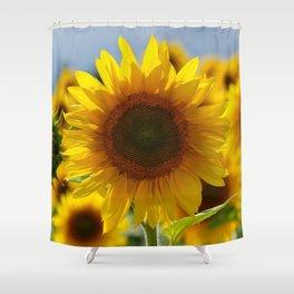In the sun Shower Curtain