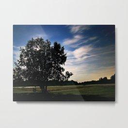 Evening Meadow Metal Print