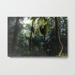Lush Belizean Jungle Metal Print