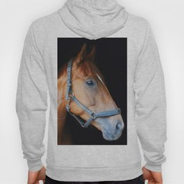 The horse Hoody