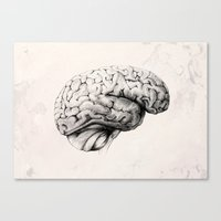 brain Canvas Prints featuring Brain by Andreas Derebucha