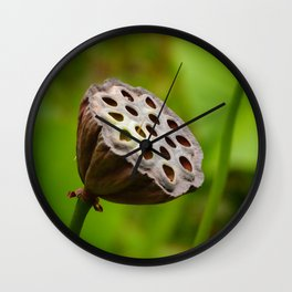 Trypophobia Wall Clock