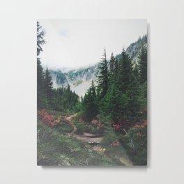 Mountain Trails Metal Print