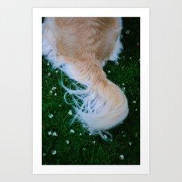 tail Art Print