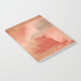 Abstract No. 410 Notebook