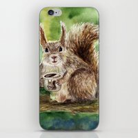squirrel iPhone & iPod Skins featuring Squirrel by Anna Shell