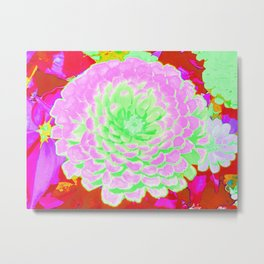 Pretty Pink and Green Zinnia in the Summer Garden Metal Print
