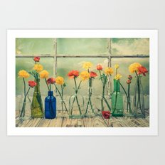 Ranunculus, Bottles and Window Still Life Art Print