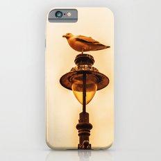 Larus Slim Case iPhone 6s