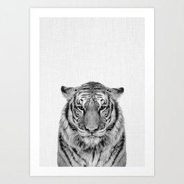 African Tiger Art Print