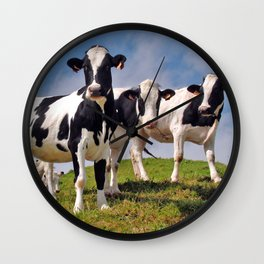Young Holstein cows Wall Clock