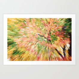 FALL CANOPY ABSTRACT Art Print