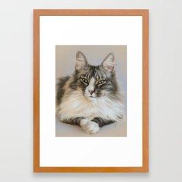 Sety, Norwegian Forest Cat Framed Art Print