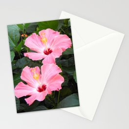 Pink Hibiscuses Stationery Cards