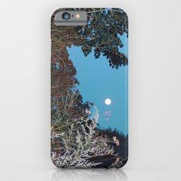 Sagebrush iPhone Case