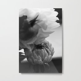 flower close up - black/white - fifteen Metal Print