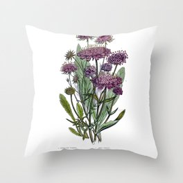 Victorian Botanical Illustration Throw Pillow