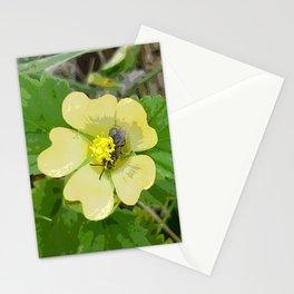 Tiny Flower, Tiny Bug Stationery Cards