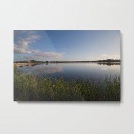Reeds at the water's edge Metal Print