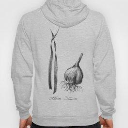 Garlic Botanical Ilustration Hoody