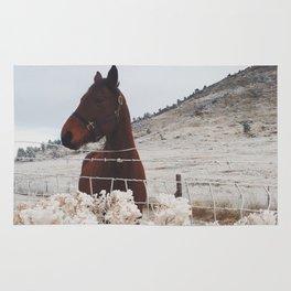 Snowy Horse Rug