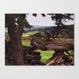 To Menwith Hill Canvas Print