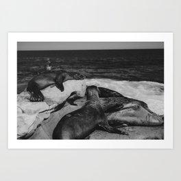 Water Puppies Art Print