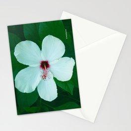 HIBICUS FLOWER Stationery Cards